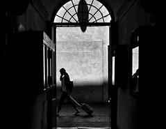 g i r l  w i t h  a  s u i t c a s e (Gaia Rampon) Tags: liminalspaces liminality inbetween traveler colorblind colorless noiretblanc blackandwhite menomalechec'ero streetphotography street bnw shadows doorway mirror reflection suitcase girl viaborgognona rome absoluteblackandwhite