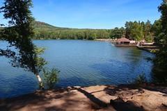 Pond Radvanecký (ZdenHer) Tags: pond radvanecký water tree sky blue forest lake czechrepublic canonpowershotg7xmarkii