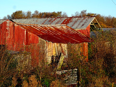 Old Barns, County Antrim, (Trevor Lawrence Photos Northern Ireland) Tags: old red barns county antrim northern ireland corigated roofs rust frosty morning