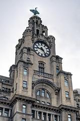 UK Liverpool - the Royal Liver Building (David Pirmann) Tags: england britain unitedkingdom liverpool royalliverbuilding architecture