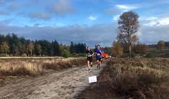 haarlerbergloop 10 km (36)