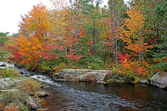 DSC03213 - Mill Stream (archer10 (Dennis) 196M Views) Tags: timberlea sony a6300 ilce6300 18200mm 1650mm mirrorless free freepicture archer10 dennis jarvis dennisgjarvis dennisjarvis iamcanadian novascotia canada autumn fall colours trees