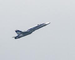Hornet-20814 (gpferd) Tags: airplane hornet jet mcdonnelldouglasfa18 vehicle baltimore maryland unitedstates us