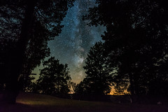 Into the Woods (free3yourmind) Tags: woods milky way night sky stars starry belarus nightsky forest