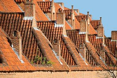 Roofs in Lier (jackfre 2) Tags: belgium lier antwerpprovince roofs chimneys