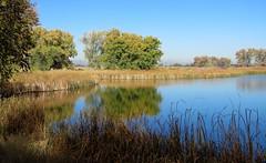Stillwaters (Patricia Henschen) Tags: rockymountainarsenal nationalwildliferefuge commercecity colorado clouds frontrange mountains highplains autumn lake wetland reflection