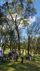 Slow Tour Brasil Roteiro Igrejinha RS (64) (slowtourbrasil) Tags: sustentabilidade passeios natureza roteiros experiência slow tour brasil nature