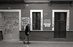 (Alfonso Lazo) Tags: leica m6 argenti arf 400 xtol 11