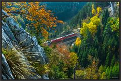"Krauselklause in October ("" Wiener Schule "") Tags: eisenbahn railway railroad ghega breitenstein krauselklause viadukt semmering semmeringbahn viaduct öbb oebb obb 1116 1144 taurus austria"