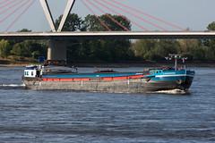 GMS Lauwrens - ENI 2312208 (5B-DUS) Tags: gms lauwrens eni 2312208 schiff binnenschiff rhein ship barge vessel