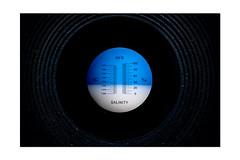 Salinity Refractometer (Mark Wasteney) Tags: macromondays measurement measure instrument device optical scale refractometer refraction photoborder frame circles
