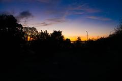 _DSC9478.jpg (thomasresch) Tags: sonneaufgang sun nordhaide panzerwiese nebel hartelholz sunrise sonne