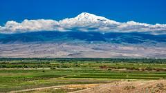 Ararat (Dmitry Karyshev) Tags: mountain nature scenics landscape outdoors agriculture summer hill farm valley ruralscene sky mountainrange tree travel beautyinnature cloudsky blue asia field everypixel karyshev