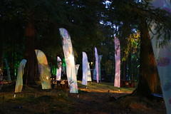 2018 - 4.10.18 Enchanted Forest (2) (marie137) Tags: forest lights trees show marie137 bright colourful pitlochry treeman attraction visit entertainment music outdoors sculptures wicker food drink family people water animation
