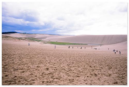 鳥取砂丘 - Tottori sand dunes
