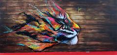 Tiger (HBA_JIJO) Tags: streetart urban graffiti art france hbajijo painting peinture spray paris92 tigre tiger urbain undergroundeffect ladéfense projetsaato festival puteaux