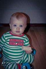 2012 christmas-101 (alanschererphotographer) Tags: boats beach capecod kids people birds boston