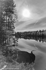 20181007004077 (koppomcolors) Tags: koppomcolors koppom boda värmland varmland sweden sverige scandinavia