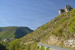 Gorges de la Jonte (Michel Seguret Thanks for 12,9 M views !!!) Tags: france lozere nature fall autumn automne michelseguret nikon d800 pro arbre tree saison season massifcentral