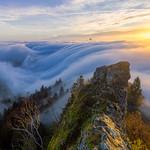Belchenflue sunrise and fog wave thumbnail
