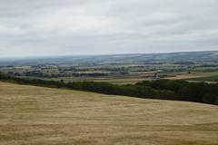 It's that Vale of Pickering again (Bods) Tags: wharramlestreettogantonwalk yorkshirewoldsway northyorkshire yorkshirewoldswayday4 crowsdale valeofpickering walk