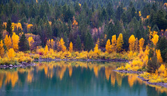 Lower Slide lake (scepdoll) Tags: antelopeflats fall mormonrow rain tetons wyoming aspens autumn barn cloudy cottonwood