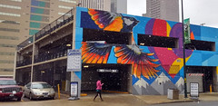 Denver, CO | 2018.10.10 | She put us in our place today with a little early October snow (Kaemattson) Tags: denver co colorado milehighcity songbird mural bird colorful snow october downtown humansandbirds flickrfriday chickadee
