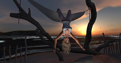 hanging out (Shanna Chalet) Tags: sl secondlife sexy sunset sonnenuntergang sundown argrace beach blond beauty