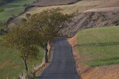 En route vers Entre-deux-Monts (Michel Seguret Thanks for 13.6 M views !!!) Tags: france nature aveyron automne autumn fall michelseguret nikon d800 pro