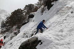 IMG_3831 (Beautiful Creation) Tags: india bagdogra darjeeling pelling yuksom gangtok lachen chopta valley lachung