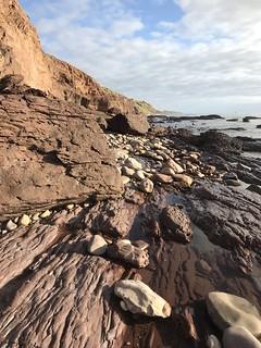marion coastal walking trail-9