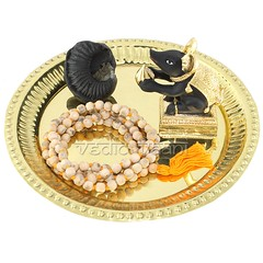 Elephant Trunk Ganesha Shaligram | From Vedic Vaani™ (vedicvaani.com) Tags: deity deities god lord ganesha natural shaligram shila gandaki ganesh mushak elephant face brass plate tulsi mala black mouse trunk devotess ganpati gajanan vinayak vighaneshwar vighanharta gold puja vedic vaani voice of vedas hinduism hindu rituals