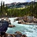 Following the Rapids Upstream with the Yoho River and a Backdrop of Mount Ogden (Yoho National Park)