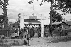 Album2film146-025 (Stichting Papua Erfgoed) Tags: stichtingpapuaerfgoed pace