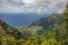 250A8683-HDR (DanaMichelle309) Tags: hdr hawaii kalalau kalalauvalley kauai napali napalicoast puuikilalookout hanapepe unitedstates us