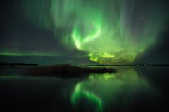 October Lights (Björn Knif) Tags: auroraborealis northernlights nightphotography dark night landscape seascape autumn october suomi finland arken replot raippaluoto