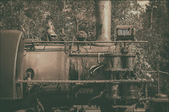 1880 Train Ride, Hill City to Keystone, South Dakota (@CarShowShooter) Tags: geo:lat=4389339883 geo:lon=10342594971 geotagged keystone southdakota unitedstates usa 18200 18200mm 1880train blackhills blackhillscentralrailroad blackhillsofsouthdakota burlingtonnorthernrailroad hillcitykeystonetrain historical historicalsteamtrain httpswww1880traincom locomotive penningtoncounty railcars railcar sonya6500 sonyalpha6500 sonye18200mmf3563oss sonyα6500 southdakotablackhills southdakotatrain southdakotatravel southdakotavacation steamlocomotive steamtrain touristattraction touristpassengerexcursiontrain train trainride travel travelphotography vacation vacationphotos vintage vintagesteamtrain