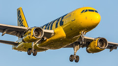 Spirit Airlines N502NK pmb20-3088 (andreas_muhl) Tags: a319 airbusa319132 klax lax losangeles n502nk spiritairlines aircraft airplane aviation planespotter planespotting