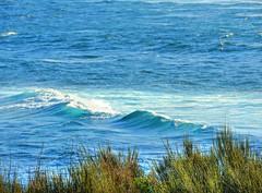 Rough seas II (elphweb) Tags: hdr nsw australia seaside