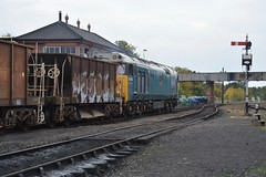 """Laira Blue Liveried Class 50, 50008 """"Thunderer"""" (37190 """"Dalzell"""") Tags: lairablue garciahanson owned ee englishelectric type4 vulcanfoundry hoover class50 50008 thunderer d408 svr severnvalleyrailway 50sat50 gala kidderminster"""
