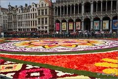 Bruxelles (hanquet jeanluc) Tags: 2018 bruxelles fleurs grandplace tapisdefleurs tapisdefleurs2018 qdub liege belgium be