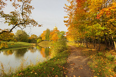 Autumn path to the Cathedral. (fedoseenko) Tags: санктпетербург россия красота colour природа beauty blissful loveliness beautiful saintpetersburg sunny art shine dazzling light russia day green park peace garden blue white голубой небо лазурный color sky pretty sun пейзаж landscape clouds view heaven mood summer serene golden gold gate colours picture hall road tree grass nature alley history trees tsar stairway walkway field autumn river lake water reflection outdoors old d800 wood cathedral church cupola holy orthodox path religion