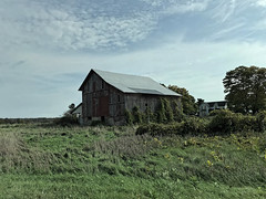 A Barn Beside the Road (joeldinda) Tags: tree sky cloud enroute travelling intransit fields barn 4236 october soybeans beans building apple iphone 2018 fall colors vacation autumn