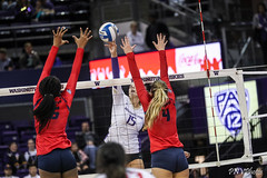 Washington Arizona-FT4I2451 (Pacific Northwest Volleyball Photography) Tags: volleyball ncaa pac12 pac12vb womensvolleyball arizona washington uwhuskies