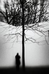3300 (Elke Kulhawy) Tags: abstract kunst art lensbaby monochrome blackandwhite verschwommen tree baum himmel person sky people emotional secrets elkekulhawy winter