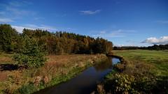 Haderis å (Steenjep) Tags: landskab landscape field mark himmel sky å stream vandløb vand water natur nature tree træ haderiså haderup