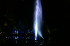 2018 - 4.10.18 Enchanted Forest (83) (marie137) Tags: forest lights trees show marie137 bright colourful pitlochry treeman attraction visit entertainment music outdoors sculptures wicker food drink family people water animation