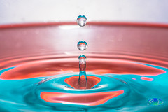 Water Drops #4 (Simone_Callegari) Tags: water waterdrops drop drops waterdrop macro macrophotography nikon nikond850 d850 105 105mm nikkor colors colori colores color acqua gocce goccia