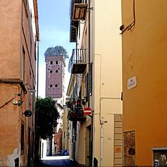 Torre Guinigi, Lucca, Italia (pom'.) Tags: panasonicdmctz101 april 2018 lucca toscana tuscany italia italy europeanunion architecture 14thcentury torreguinigi 100 200 300