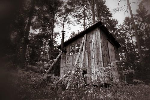 Lone cabin